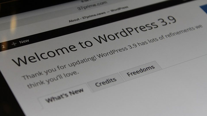 wordpress 3.9 upgrade